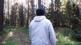 Homem novo na viagem de acampamento footage Conceito da liberdade e da natureza Opinião o homem da parte traseira que anda nas ma fotografia de stock