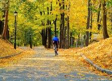 Homem novo no t-shirt azul na bicicleta na perspectiva do parque da cidade do outono, conceito dos esportes do estilo de vida sau fotos de stock royalty free