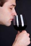 Homem novo que cheira um vidro do vinho vermelho fotografia de stock royalty free