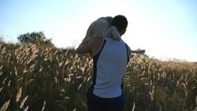 Homem novo que continua as mãos seu cão pelo campo Jogo com Labrador ou golden retriever na natureza Amor e amizade vídeos de arquivo