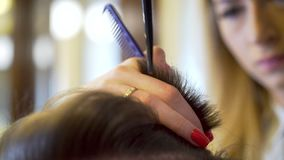 Homem novo que obtém o corte de cabelo vídeos de arquivo