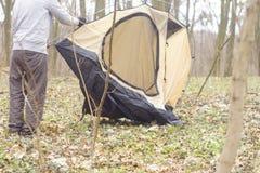 Homem novo que põe uma barraca nas madeiras a Fotografia de Stock Royalty Free