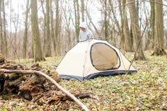 Homem novo que põe uma barraca nas madeiras a Fotos de Stock Royalty Free