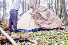Homem novo que põe uma barraca nas madeiras a Fotografia de Stock