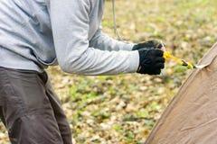 Homem novo que põe uma barraca nas madeiras a Imagens de Stock Royalty Free