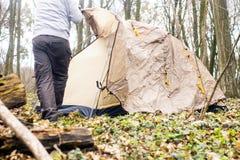Homem novo que põe uma barraca nas madeiras a Foto de Stock Royalty Free