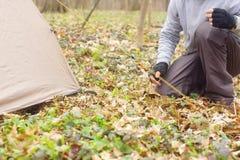 Homem novo que põe uma barraca nas madeiras a Imagens de Stock