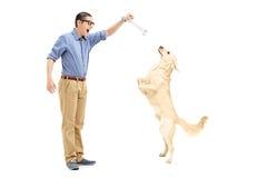 Homem novo que seduz um cão com um osso Fotografia de Stock Royalty Free
