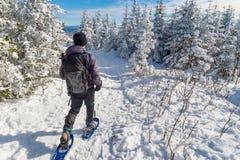 Homem novo que snowshoeing no inverno, no distrito oriental de Quebeque imagens de stock