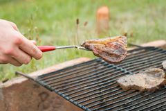 Homem novo que toma a carne da grade e da doação caseiros do jardim Foto de Stock Royalty Free