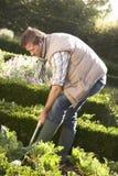 Homem novo que trabalha no jardim Imagens de Stock