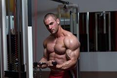 Homem novo saudável que faz o exercício para o bíceps fotografia de stock