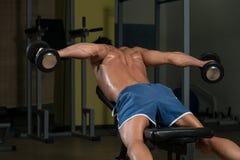 Homem novo saudável que faz o exercício para a parte traseira Fotografia de Stock Royalty Free
