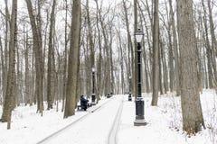 Homem - o pensionista idoso, senta-se em um banco de parque no inverno Hig Fotografia de Stock