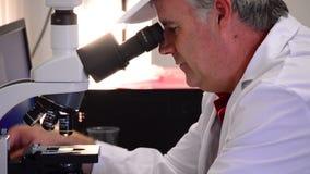 Homem que analisa com um microscópio video estoque