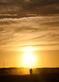 Homem que anda ao nascer do sol Imagem de Stock