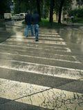 Homem que anda em andar um c?o Dalmatian na chuva na rua fotos de stock