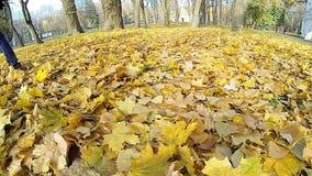 Homem que anda nas folhas caídas do amarelo video estoque