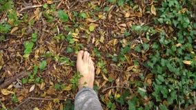 Homem que anda nas madeiras com os pés descalços vídeos de arquivo