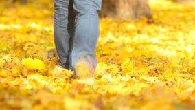 Homem que anda no folhas caídas video estoque