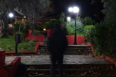 Homem que anda no parque com as lâmpadas de rua na noite imagens de stock royalty free