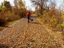 Homem que anda o cão no outono imagem de stock royalty free