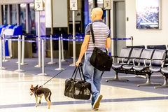 Homem que anda seu cão em um aeroporto Fotografia de Stock