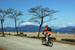Homem que bicycling na praia Foto de Stock Royalty Free
