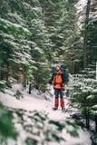Homem que caminha na floresta bonita do inverno Imagens de Stock Royalty Free