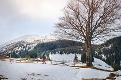 Homem que caminha na montanha bonita do inverno Fotos de Stock