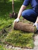Homem que coloca a grama para o gramado novo do jardim imagem de stock royalty free