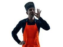 Homem que cozinha a silhueta do cozinheiro chefe isolada Fotografia de Stock