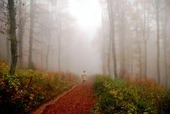 Homem que desaparece em fores do fogy Fotografia de Stock Royalty Free