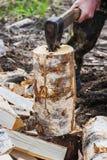 Homem que desbasta o talhador de madeira Imagem de Stock