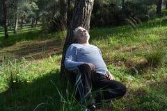 Homem que dorme sob uma árvore Imagem de Stock
