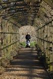 Homem que empurra o buggy. fotografia de stock royalty free