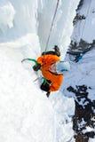 Homem que escala a cachoeira congelada Imagens de Stock