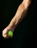 Homem que espreme a bola de tênis Fotografia de Stock Royalty Free