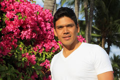Homem que está na frente das flores do Bougainvillea Fotos de Stock
