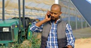 Homem que fala no telefone celular na exploração agrícola 4k do mirtilo vídeos de arquivo