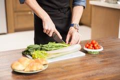 Homem que faz uma salada em casa Imagens de Stock