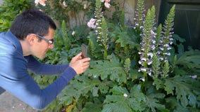 Homem que fotografa plantas vídeos de arquivo