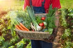 Homem que guarda uma cesta com legumes frescos Imagens de Stock