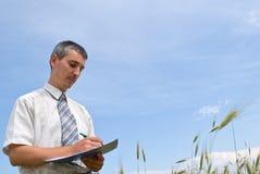 Homem que inspeciona o trigo Fotografia de Stock Royalty Free