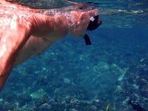 Homem que mergulha em águas tropicais mornas Imagens de Stock