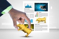 Homem que mostra o touro do mercado de valores de ação Imagens de Stock