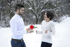 Homem que oferece uma rosa a sua amiga imagens de stock royalty free