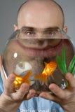 Homem que olha através da bacia do Goldfish Foto de Stock Royalty Free