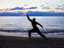 Homem que pratica Wushu no por do sol Silhueta de um homem no por do sol fotografia de stock royalty free