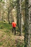 Homem que tem uma caminhada na floresta imagem de stock royalty free